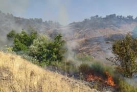 Elazığ'da 2 gün süren orman yangını söndürüldü