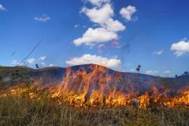 Elazığ'da korkutan yangın 40 dönüm otluk alan kül oldu