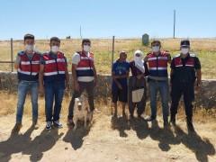 Kaybolan zihinsel engelli şahıs, iz takip köpeğiyle bulundu