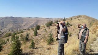 Elazığ'da av denetimi 3 şahsa yasal işlem yapıldı