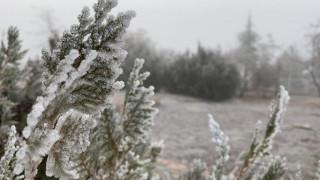 Elazığ'da ağaçlar kırağı tuttu, süs havuzları dondu