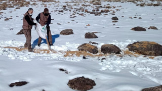 Elazığ'da kaçak avla mücadele ve yaban hayvanlarına yem desteği
