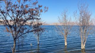 Her yerde baraj ve göllerde su seviyesi düştü, deprem merkezindeki o göldeki  yükselme dikkat çekti