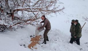 Elazığ'da karla kaplı bölgelerde yaban hayatına yem desteği