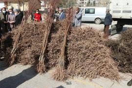 """Elazığ'da """"Meyveciliği Geliştirme"""" projesi, 13 bin fidan dağıtıldı"""