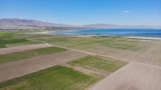 12 yıl önceki kuraklık tekrar baş gösterdi, kuruyan baraj havzasında tarıma başlandı
