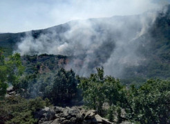 Elazığ-Diyarbakır arasında orman yangını söndürme çalışmaları sürüyor