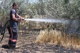 Elazığ'da yangın: 12 dönüm ekili alan kül oldu