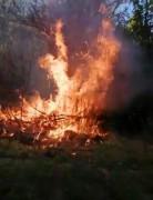 Elazığ'da yangın: 4 bahçe zarar gördü