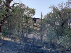 Elazığ'da çıkan yangında bir ev ve bahçeler zarar gördü